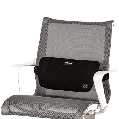 Fellowes 8026501 Plush Touch Portable Lumbar Support